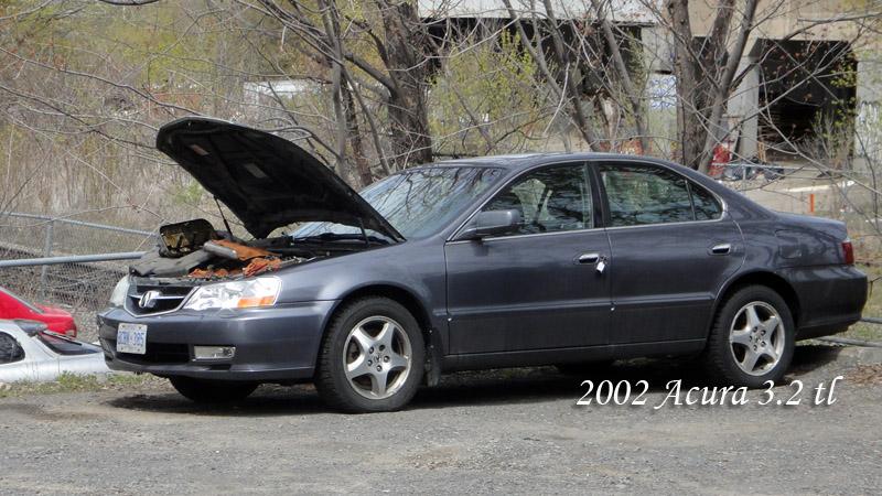 2003 Acura 32tl Bent Valves Takaki Automotive. 2003 Acura 32tl Bent Valves. Acura. 1997 Acura Tl 3 2tl Belt Diagram At Scoala.co